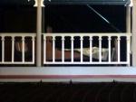 showboat angela 554.JPG